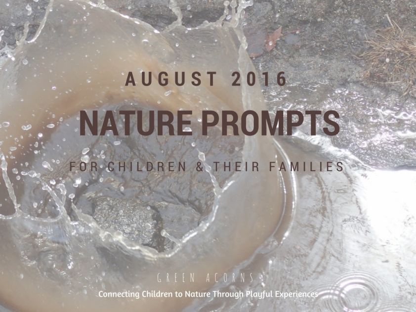 Noticing Nature - Monthly Nature Prompts for Children and Their Families: August 2016